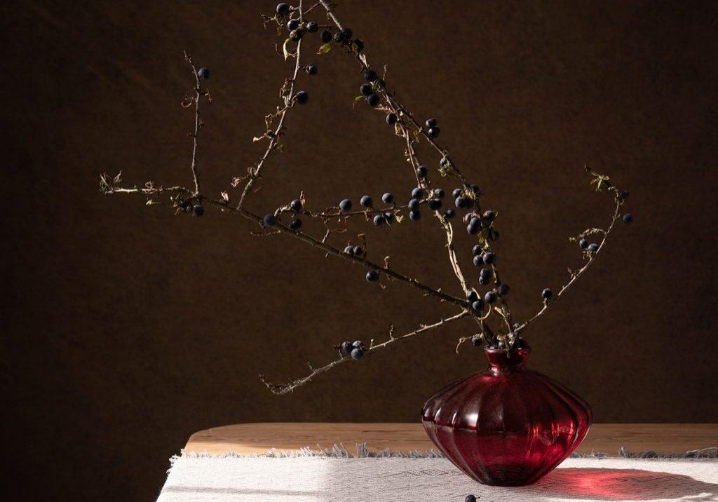 studio-sloe-berries-small-9square